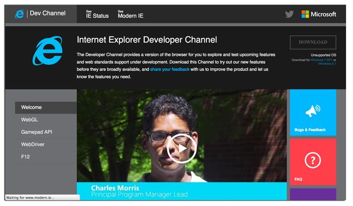 Microsoft Browser